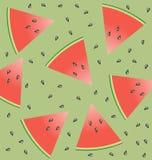 Watermeloen en zaden stock illustratie