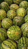 watermeloen Fruit en plantaardige winkel watermeloenen Stock Fotografie