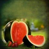 Watermeloen Grafische Illustratie Royalty-vrije Stock Foto's