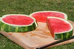 Watermeloen in het Park Royalty-vrije Stock Afbeeldingen