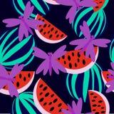 Watermeloen met libel Stock Afbeeldingen