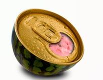 Watermeloen met tik hoogste dekking royalty-vrije stock afbeelding