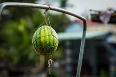 Watermeloen op het drijven markt op Mekong Rivier Stock Fotografie