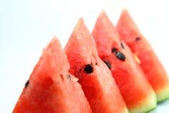 Watermeloendia Stock Fotografie