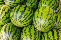 watermeloenen Royalty-vrije Stock Fotografie