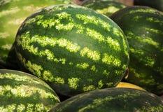 Watermeloenen als achtergrond Stock Afbeeldingen