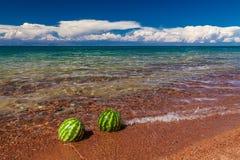 Watermeloenen op de kust Stock Afbeelding