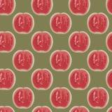 Watermeloenen in pastelkleuren Stock Afbeelding