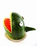 Watermeloenhaai Royalty-vrije Stock Afbeeldingen