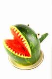 Watermeloenhaai Stock Afbeeldingen