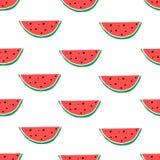 Watermeloenhand getrokken naadloos patroon Stock Afbeeldingen