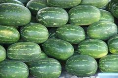 Watermeloenoogst voor verkoop stock foto's