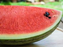 Watermeloenplak Royalty-vrije Stock Foto's