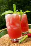 watermelom питья стоковое фото rf