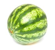 Watermelon Royalty Free Stock Photo