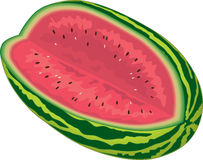 Watermelon. Big, juicy, tasty and ripe watermelon Stock Image