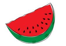 Watermelon. Beautifull vector watermelon on white Royalty Free Stock Photography