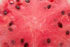 Watermelon. Closeup of cut ripe watermelon Stock Image