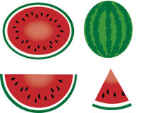 Watermelon. Illustrations of whole, half, and sliced watermelon. Suitable for cut and paste Stock Images