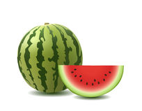 Watermelon. Sliced ripe watermelon. Vector illustration Royalty Free Stock Photography