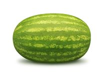 Watermelon. Isolated on a white background. Isolation is on a transparent layer in the PNG format royalty free stock photo