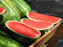 Watermelon Royalty Free Stock Photos