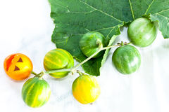 Watermelon. Water melon in green leaf Stock Image