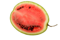 Watermelon. A ripe watermelon on a white background Stock Photo