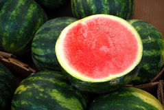 Watermelon. Close-up of a watermelon fruit Royalty Free Stock Photo