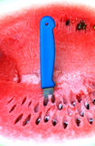 Watermelon. Pic of Watermelon and knife on it Royalty Free Stock Photography