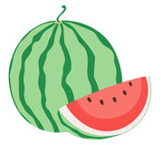 Watermelon. Vector illustration of watermelon on white background Stock Photography
