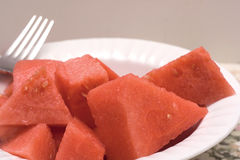 watermelon Royaltyfri Foto