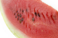 Watermelon. On a white background Royalty Free Stock Photos