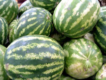 Watermelon. S royalty free stock image