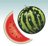 Watermelon. Appetizing slice of watermelon. Vector image Stock Photography