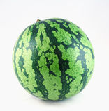 Watermelon. Big watermelon with white background Royalty Free Stock Photo