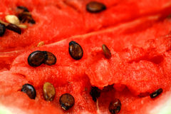 Watermelon background Royalty Free Stock Photos