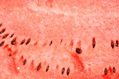 Watermelon background Stock Photos