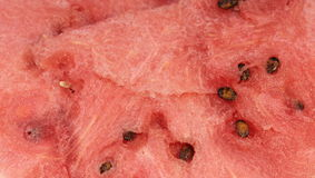Watermelon background Royalty Free Stock Photo