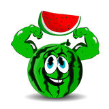Watermelon with biceps in hands red slice, cartoon on white background. Stock Photos