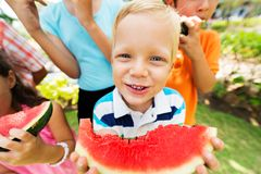 Watermelon Stock Photos