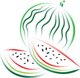 Watermelon. Brush stroke watermelon isolated illustrated clip art image Stock Photos