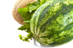 Watermelon and cantaloupe Stock Photos