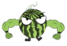 Watermelon cartoon character Stock Image