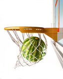 Watermelon centering the basket, close-up view. Royalty Free Stock Images