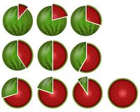 Watermelon circular diagrams Stock Photos