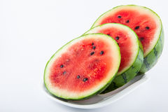 Watermelon Citrullus lanatus Stock Image