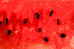 Watermelon close-up. Red tasty watermelon close-up, ready for designers Stock Image