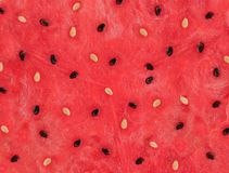 Watermelon Close- Up Royalty Free Stock Image