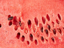 Watermelon close-up Stock Photography